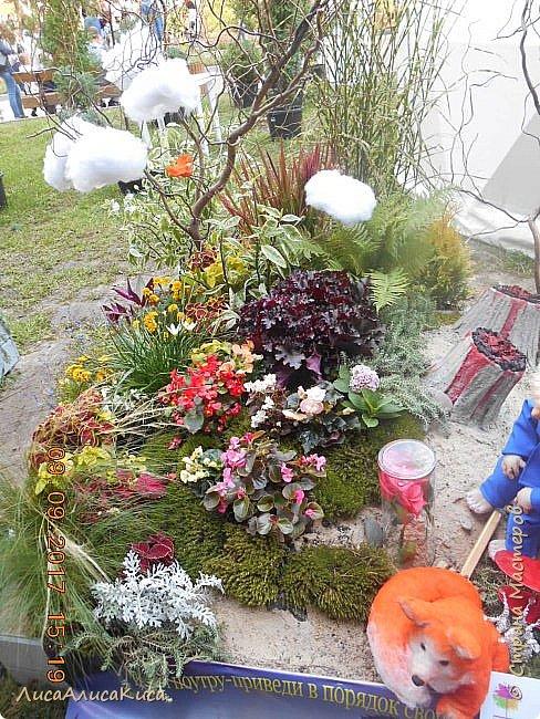 """Всем привет!Сегодня я хочу провести для вас небольшую экскурсию по выстовке """"Воронеж город-сад""""2017.  фото 7"""