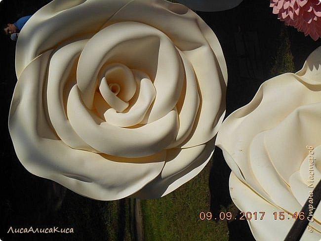 """Всем привет!Сегодня я хочу провести для вас небольшую экскурсию по выстовке """"Воронеж город-сад""""2017.  фото 23"""
