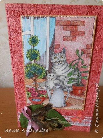 """Последние открытки из серии """"Кошки"""" по рисункам Натальи Шумихиной (Ильиновой в СМ). Я постаралась, чтобы все 16 рисунков имели отдельную открытку, а внутри я дублировала вторые экземпляры рисунков произвольно.Поэтому вы увидите какие-то рисунки дважды. фото 2"""
