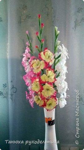 Здравствуйте мастера и гости Страны! В моем цветочном саду выросли гладиолусы, правда всего три (боялась за них браться). Представляю их на ваш суд. фото 1