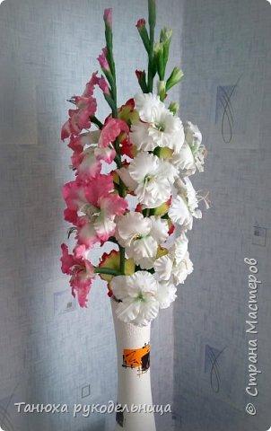 Здравствуйте мастера и гости Страны! В моем цветочном саду выросли гладиолусы, правда всего три (боялась за них браться). Представляю их на ваш суд. фото 2