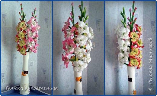 Здравствуйте мастера и гости Страны! В моем цветочном саду выросли гладиолусы, правда всего три (боялась за них браться). Представляю их на ваш суд. фото 3