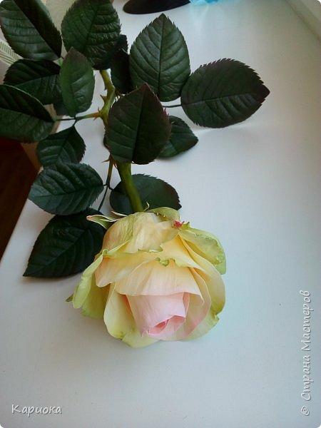 Роза  из фоамирана на стебле из холодного фарфора. фото 2