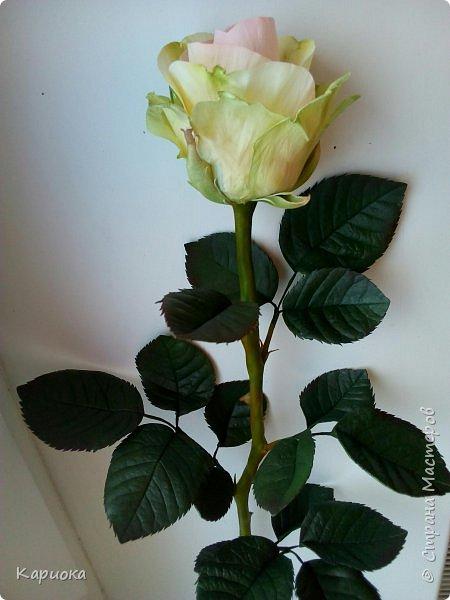 Роза  из фоамирана на стебле из холодного фарфора. фото 4