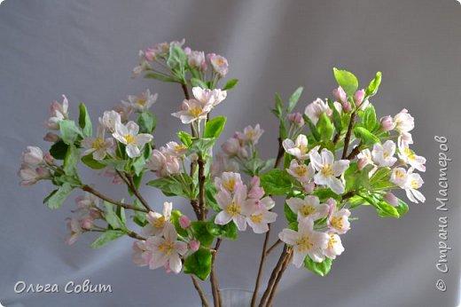 Яблоня. Холодный фарфор. фото 2