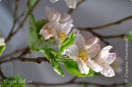 Яблоня. Холодный фарфор. фото 3