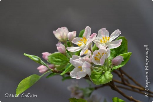 Яблоня. Холодный фарфор. фото 4