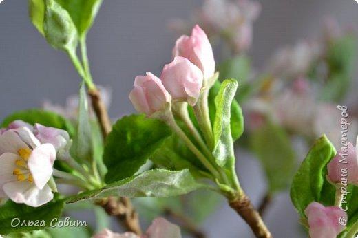 Яблоня. Холодный фарфор. фото 7