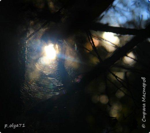 Здравствуйте!!! Погода сейчас стоит отличная,солнечно,очень тепло! Но и дождики не забывают поливать)) Вот после дождя мы и собрались в лес,14сентября.Долго не планировали гулять,походили часа полтора. Я фотографировала,муж собирал))) Набрали несколько белых,подберёзовиков-черноголовиков, и немного опят (все резать не стали,совсем уж махонькие,да и не жадные мы - взяли,сколько нам надо было))). фото 49