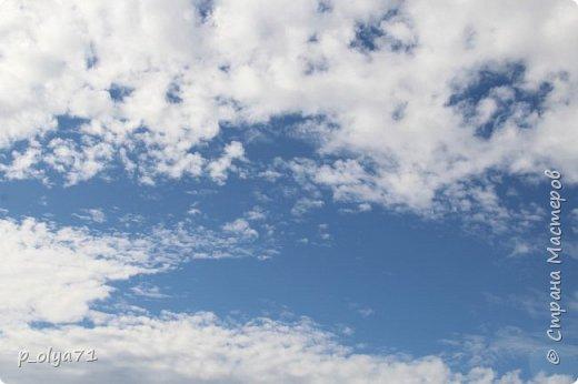 Здравствуйте!!! Погода сейчас стоит отличная,солнечно,очень тепло! Но и дождики не забывают поливать)) Вот после дождя мы и собрались в лес,14сентября.Долго не планировали гулять,походили часа полтора. Я фотографировала,муж собирал))) Набрали несколько белых,подберёзовиков-черноголовиков, и немного опят (все резать не стали,совсем уж махонькие,да и не жадные мы - взяли,сколько нам надо было))). фото 90