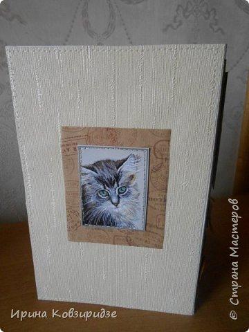 """Три открытки """"Собаки"""". Но котам так понравилось у меня жить, что они тоже затесались в эту компанию. фото 17"""