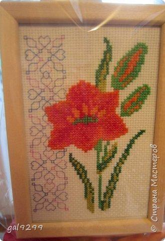 Фея маков. Схема вышивки из журнала Cross Stitcher.  фото 13