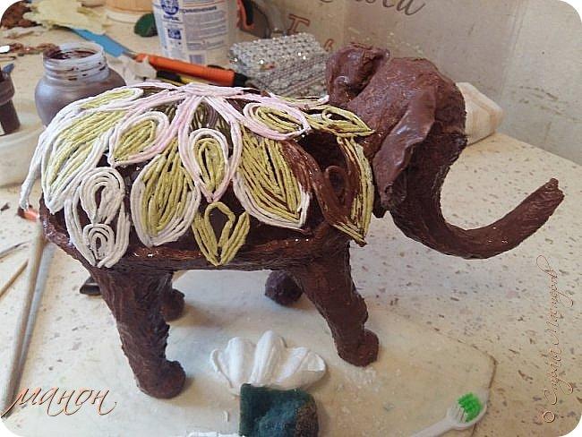 слон фото 8
