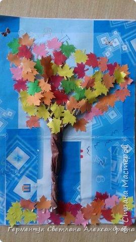 """В этом году очень теплая осень ,и листья не торопятся желтеть . Мы с ребятами 3""""А """" класса  украсили  деревья разноцветными листочками .Получилась осенняя аллея  из кленов. фото 3"""