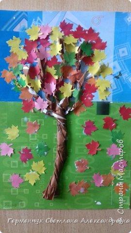 """В этом году очень теплая осень ,и листья не торопятся желтеть . Мы с ребятами 3""""А """" класса  украсили  деревья разноцветными листочками .Получилась осенняя аллея  из кленов. фото 12"""