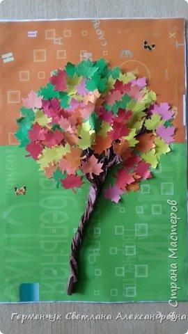 """В этом году очень теплая осень ,и листья не торопятся желтеть . Мы с ребятами 3""""А """" класса  украсили  деревья разноцветными листочками .Получилась осенняя аллея  из кленов. фото 22"""