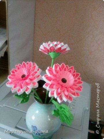 Здравствуйте!!! Зимой этого года сделала маме. Она у меня любит разные цветочки. Бумага для принтера, нарезала сама. Размер 5 мм. фото 2