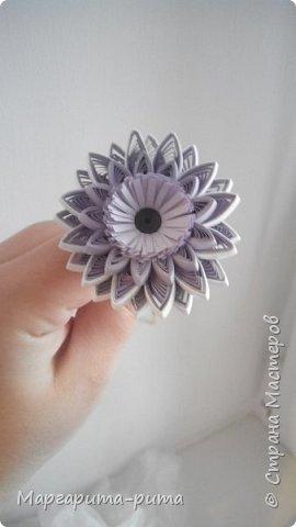 Здравствуйте!!! Зимой этого года сделала маме. Она у меня любит разные цветочки. Бумага для принтера, нарезала сама. Размер 5 мм. фото 4