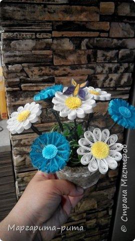 Здравствуйте!!! Зимой этого года сделала маме. Она у меня любит разные цветочки. Бумага для принтера, нарезала сама. Размер 5 мм. фото 5