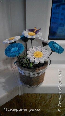 Здравствуйте!!! Зимой этого года сделала маме. Она у меня любит разные цветочки. Бумага для принтера, нарезала сама. Размер 5 мм. фото 6