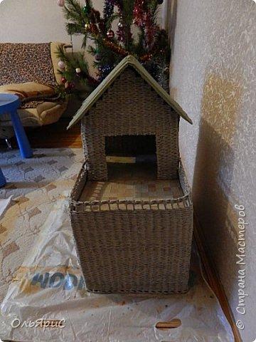 Кошачьи апартаменты фото 5