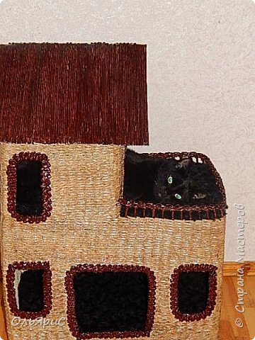 Кошачьи апартаменты фото 6