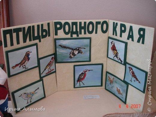 Исследовательская работа о природе Донского края. Изображения птиц собраны из кожаных точек по схемам вышивки крестом. фото 1