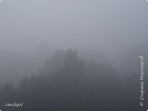 Доброе утро, Страна! Я к Вам со своим любимым лавашем. фото 29