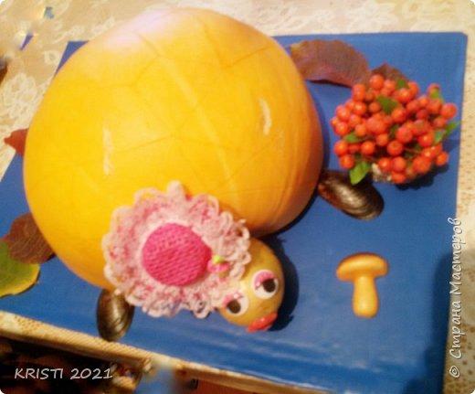В этот раз я решила сделать черепашку в детский сад :) К сожалению, на фото цвета не соответствуют действительным и совсем не видно узор на спинке черепашки.  фото 1