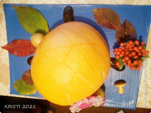В этот раз я решила сделать черепашку в детский сад :) К сожалению, на фото цвета не соответствуют действительным и совсем не видно узор на спинке черепашки.  фото 5