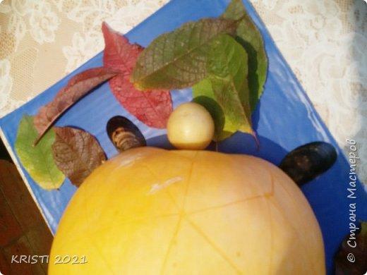 В этот раз я решила сделать черепашку в детский сад :) К сожалению, на фото цвета не соответствуют действительным и совсем не видно узор на спинке черепашки.  фото 3