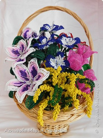 "цветок в горшке ""Немофила"" фото 7"