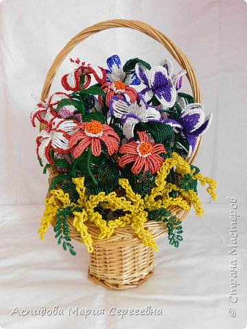 "цветок в горшке ""Немофила"" фото 10"