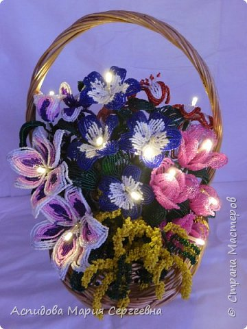 "цветок в горшке ""Немофила"" фото 9"