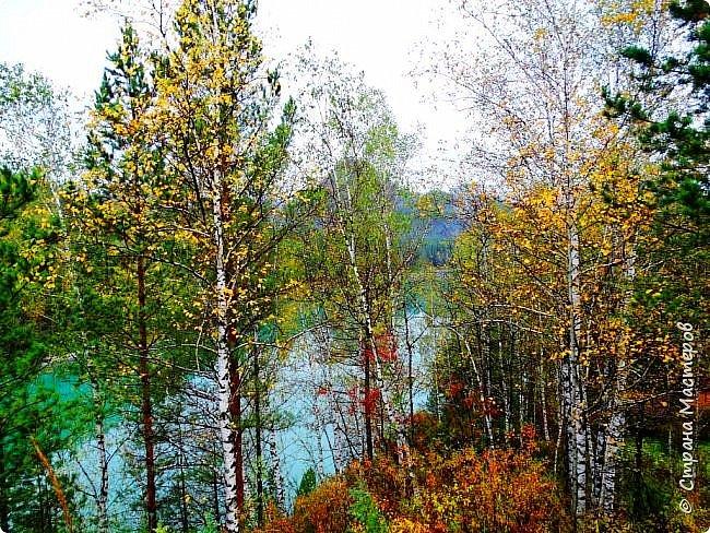 Это Иоанн Кронштадтский, святой праведник, сказал, что цветы – остатки рая на земле. И разве нельзя назвать райским местом этот родник в Бешпельтирском логу? У нас, в Горном Алтае, такая красота повсюду. И я приглашаю вас на неспешную прогулку по цветущему Алтаю. фото 6