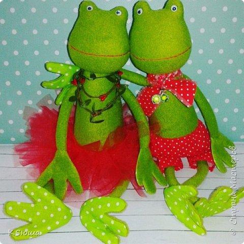 Влюбленная пара лягушат) фото 1