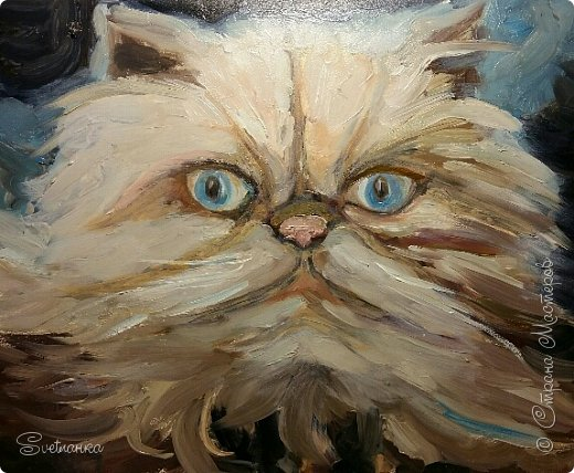 Люблю кошек! И также люблю их рисовать! фото 3