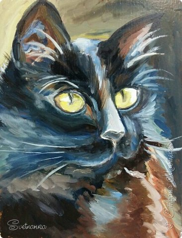 Люблю кошек! И также люблю их рисовать! фото 1