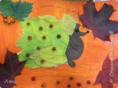 Осенние поделки  фото 9