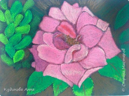 """""""А роза пахнет розой, хоть розой назови ее, хоть нет..."""". :)  У. Шекспир"""