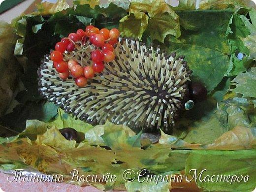 Вот такая Мадам Кабачкова получилась у нас с дочкой:) Поделка сделана на выставку к Празднику Осени. фото 23