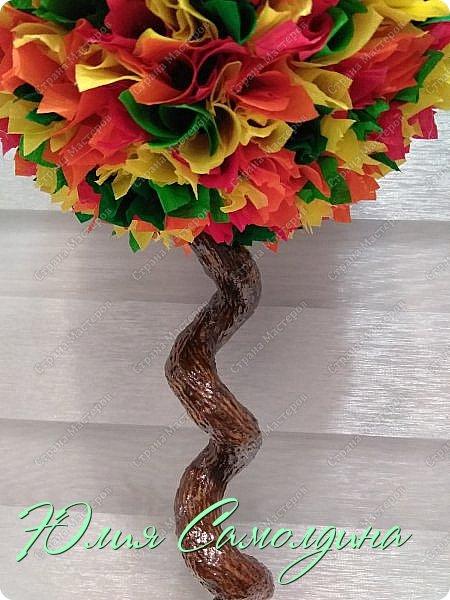 Гостям моей странички большой привет! Представляю на ваш суд новый топиарий с разноцветной листвой.  Он как солнышко,  выглянувшее из-за тучки в осенний день.   фото 3