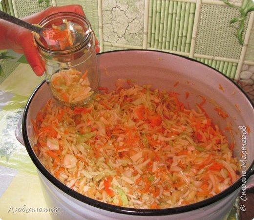 """Здравствуйте мои дорогие! Всех очень-очень рада видеть на своей страничке!!! Сегодня хочу с вами поделиться ещё одним рецептом - салат """"Золотая осень"""".  Рецепт очень удачный и получается очень вкусно, рекомендую! Зимой так приятно кушать с любыми вторыми блюдами, либо использовать как закуску (салат)  Продукты: капуста -2.200 кг лук - 600 г морковь - 800 г перец болгарский - 800 г сахар  - 1 столовая ложка соль - 3 столовые ложки подсолнечное масло 450 мл 9 % уксусная кислота - 400 мл  фото 20"""