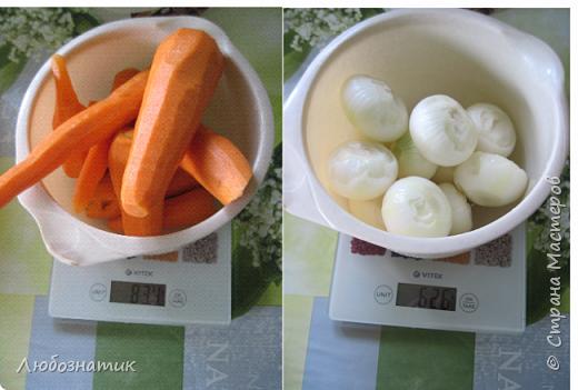 """Здравствуйте мои дорогие! Всех очень-очень рада видеть на своей страничке!!! Сегодня хочу с вами поделиться ещё одним рецептом - салат """"Золотая осень"""".  Рецепт очень удачный и получается очень вкусно, рекомендую! Зимой так приятно кушать с любыми вторыми блюдами, либо использовать как закуску (салат)  Продукты: капуста -2.200 кг лук - 600 г морковь - 800 г перец болгарский - 800 г сахар  - 1 столовая ложка соль - 3 столовые ложки подсолнечное масло 450 мл 9 % уксусная кислота - 400 мл  фото 3"""