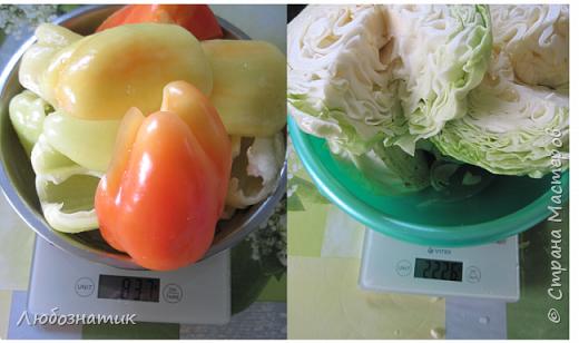 """Здравствуйте мои дорогие! Всех очень-очень рада видеть на своей страничке!!! Сегодня хочу с вами поделиться ещё одним рецептом - салат """"Золотая осень"""".  Рецепт очень удачный и получается очень вкусно, рекомендую! Зимой так приятно кушать с любыми вторыми блюдами, либо использовать как закуску (салат)  Продукты: капуста -2.200 кг лук - 600 г морковь - 800 г перец болгарский - 800 г сахар  - 1 столовая ложка соль - 3 столовые ложки подсолнечное масло 450 мл 9 % уксусная кислота - 400 мл  фото 4"""