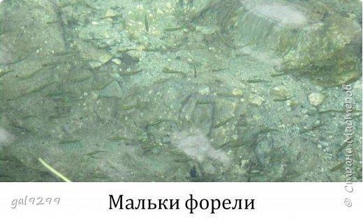 Домбай. Озеро Туманлыкель.  фото 7