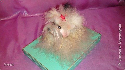 """Кукла выполнена в технике """"Скульптурный текстиль""""и """"Сухое валяние"""". Материал: капрон, синтепон, овечья шерсть, мех. Размер: 15:12 см .  фото 3"""