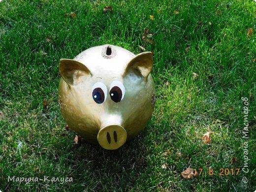Доброго времени суток всем жителям Страны!Благодаря МК Наташи Грин у меня появилась такая свинка. фото 7