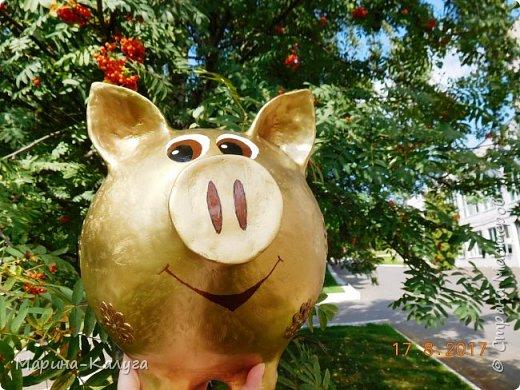 Доброго времени суток всем жителям Страны!Благодаря МК Наташи Грин у меня появилась такая свинка. фото 12