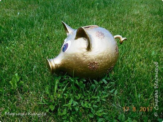 Доброго времени суток всем жителям Страны!Благодаря МК Наташи Грин у меня появилась такая свинка. фото 10